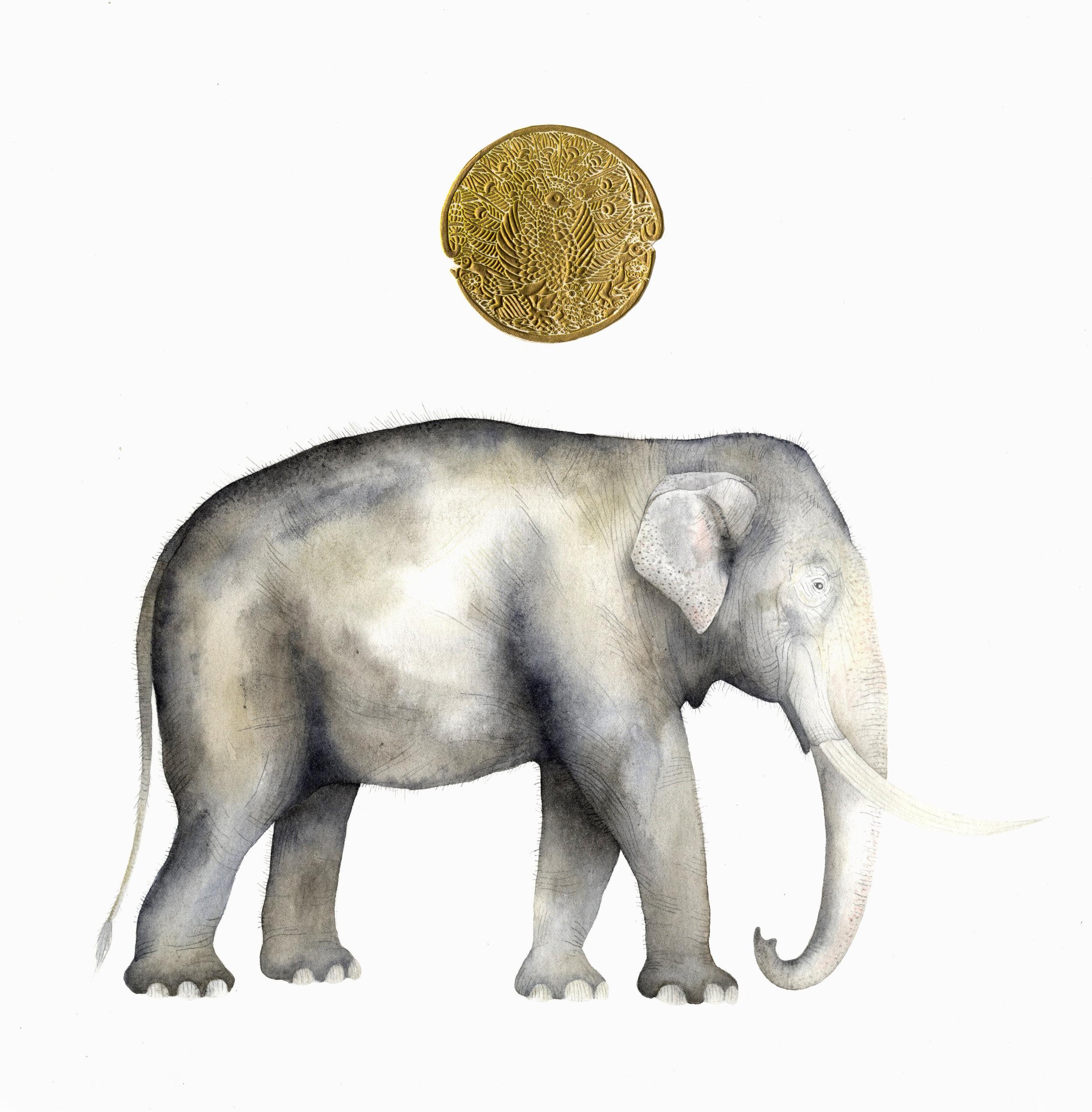 Indian Elephant Gold Sun  watercolour  40 x 40 cm  £320