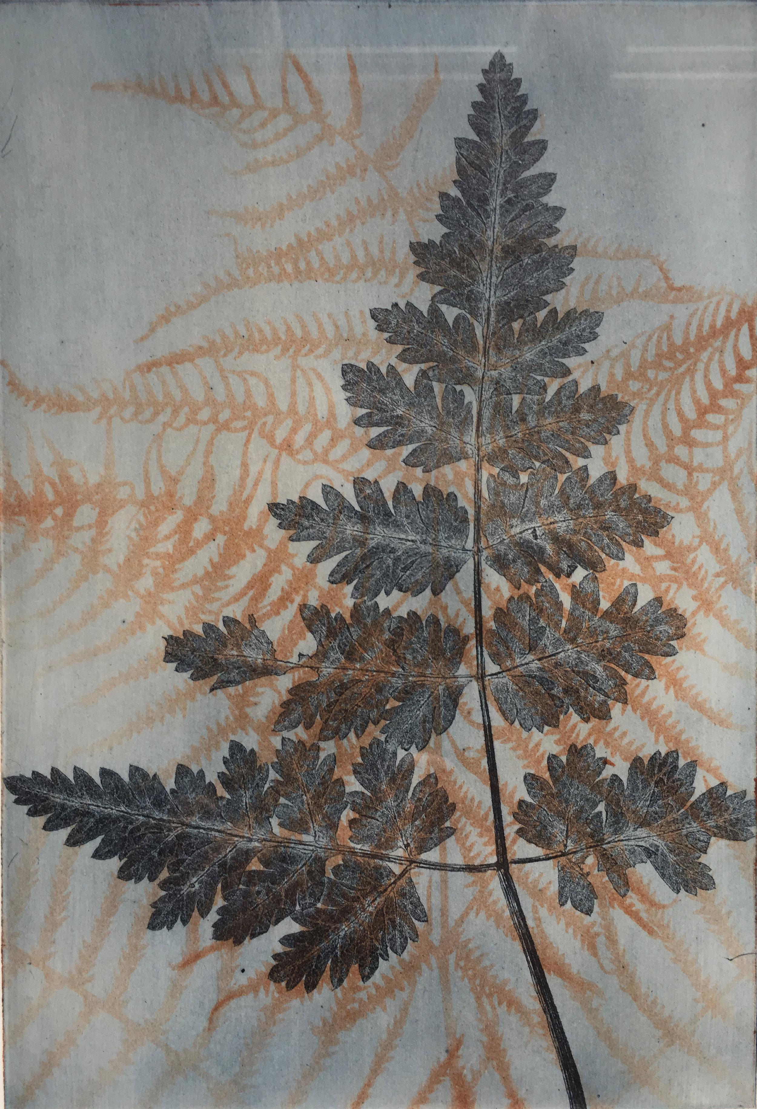 Norfolk Lane   etching   14 x 21 cm image  33 x 41 cm framed  SOLD