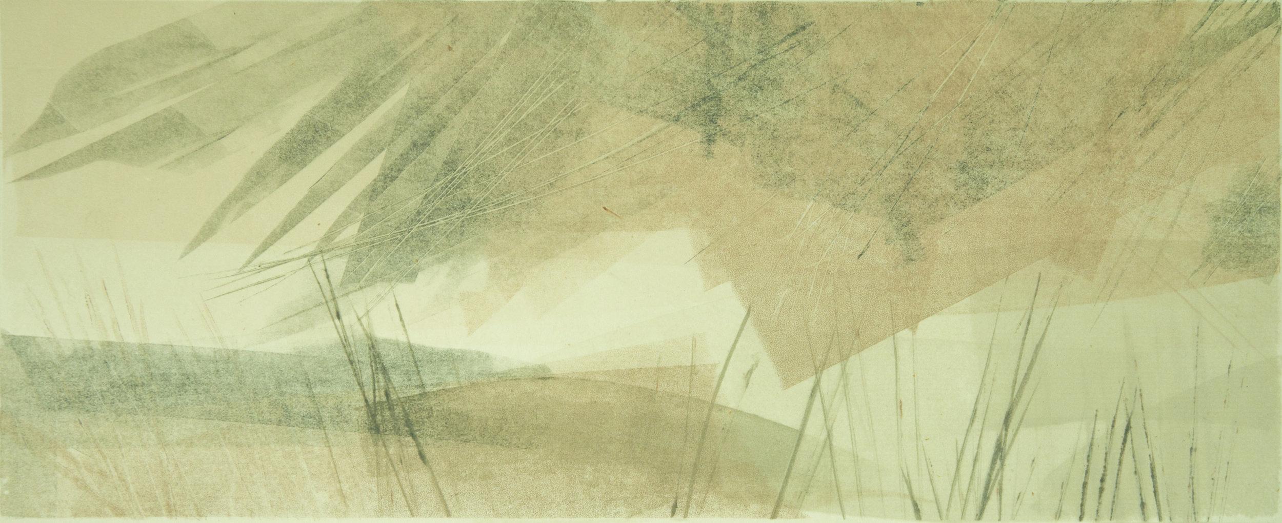 Autumnal Grasslands   Monotype , Unique  570mm x 380mm (Framed)  £300