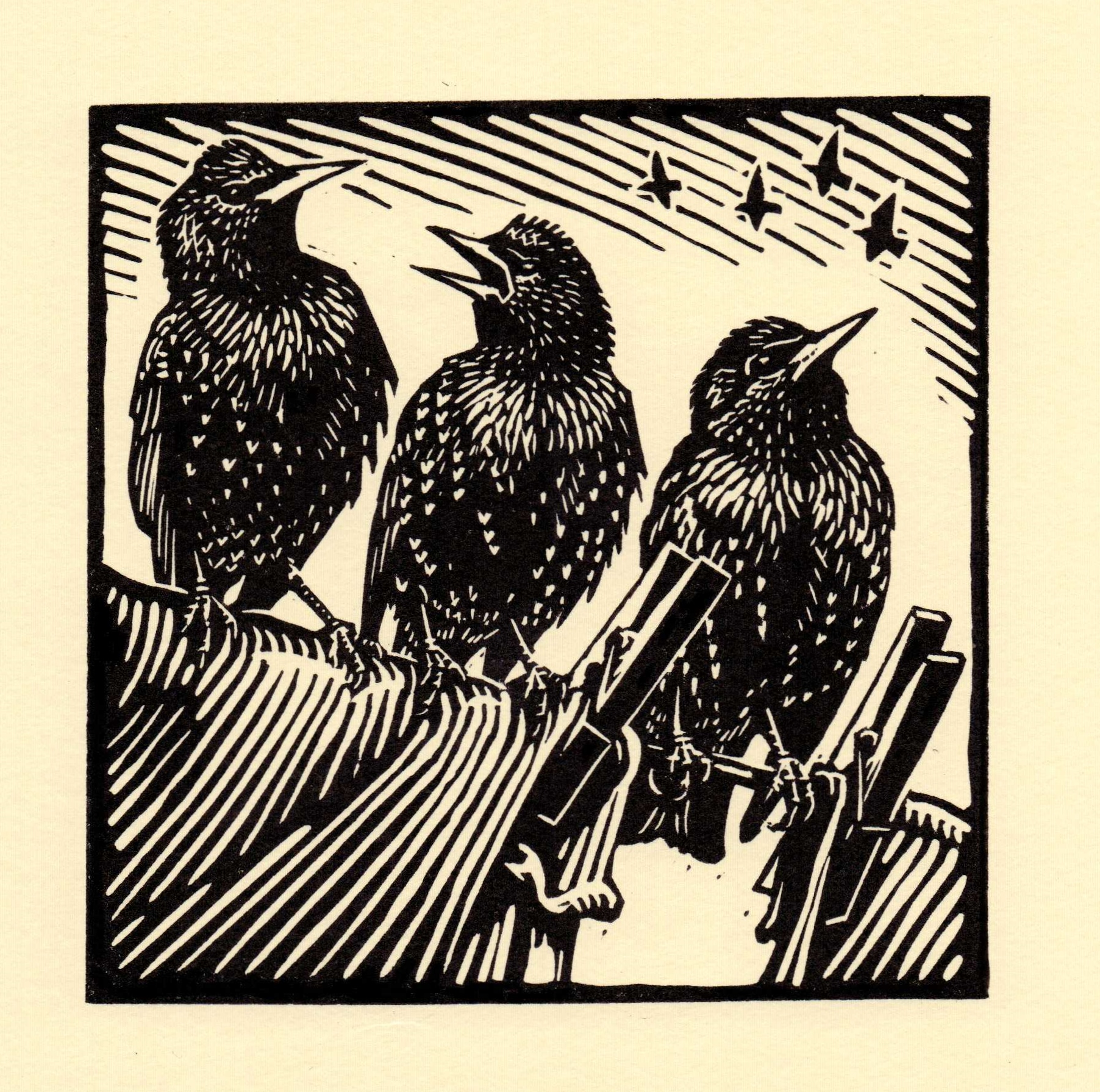 Starlings   linocut   £125 framed  £85 unframed