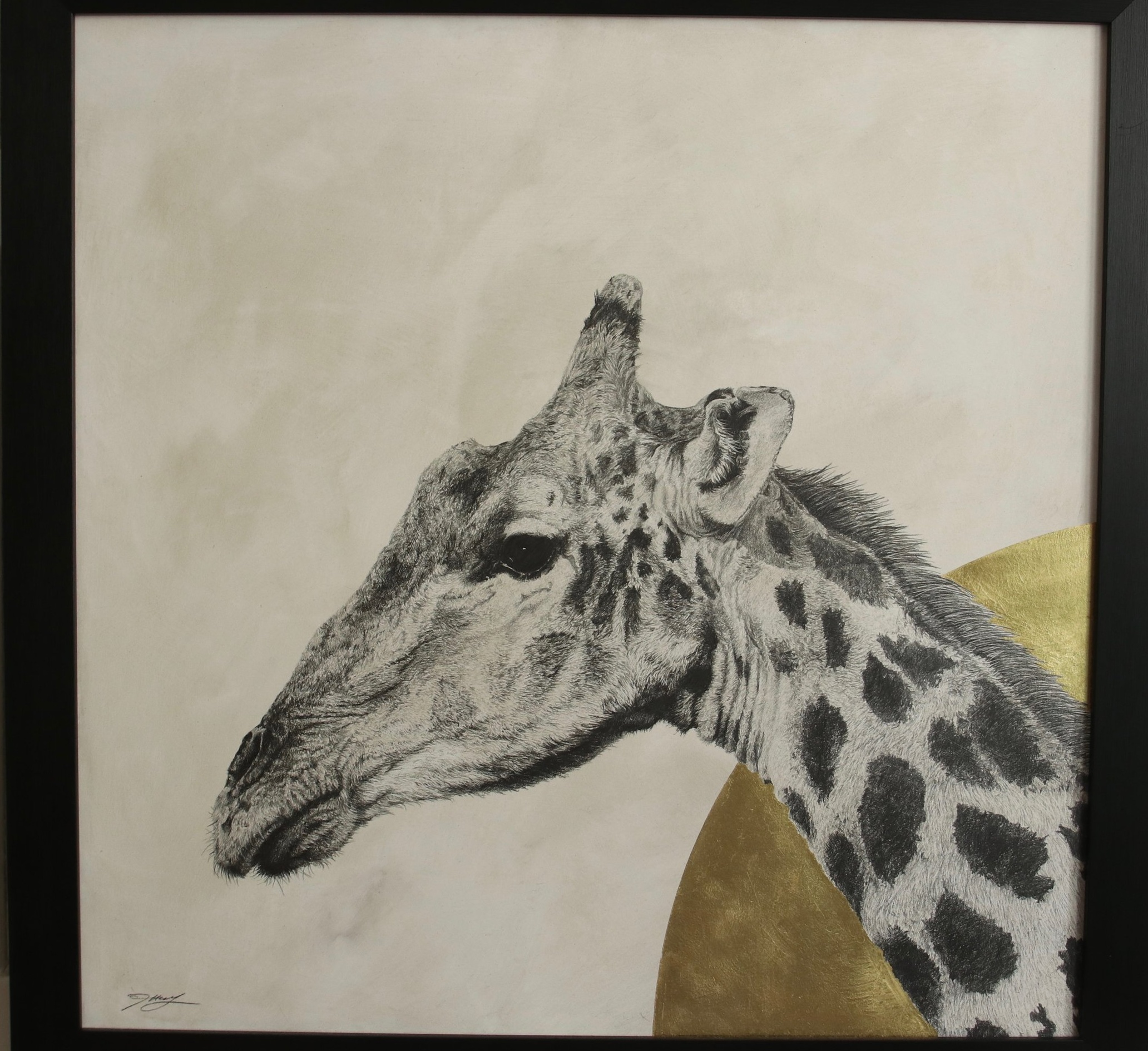 Giraffe I  Graphite on panel with 24crt gold leaf  61 x 61cm  £1,500