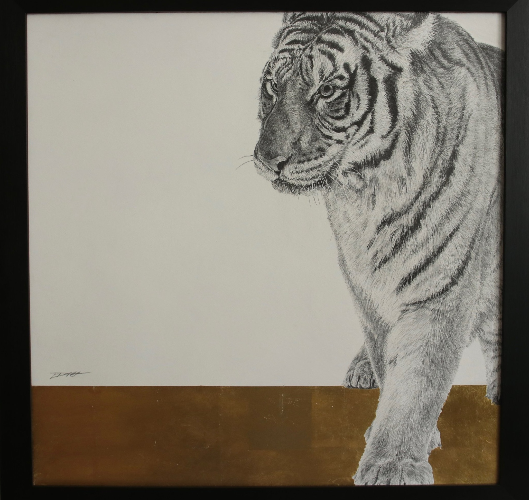 Tiger I  Graphite on panel with 24crt gold leaf  61 x 61cm  £1,500