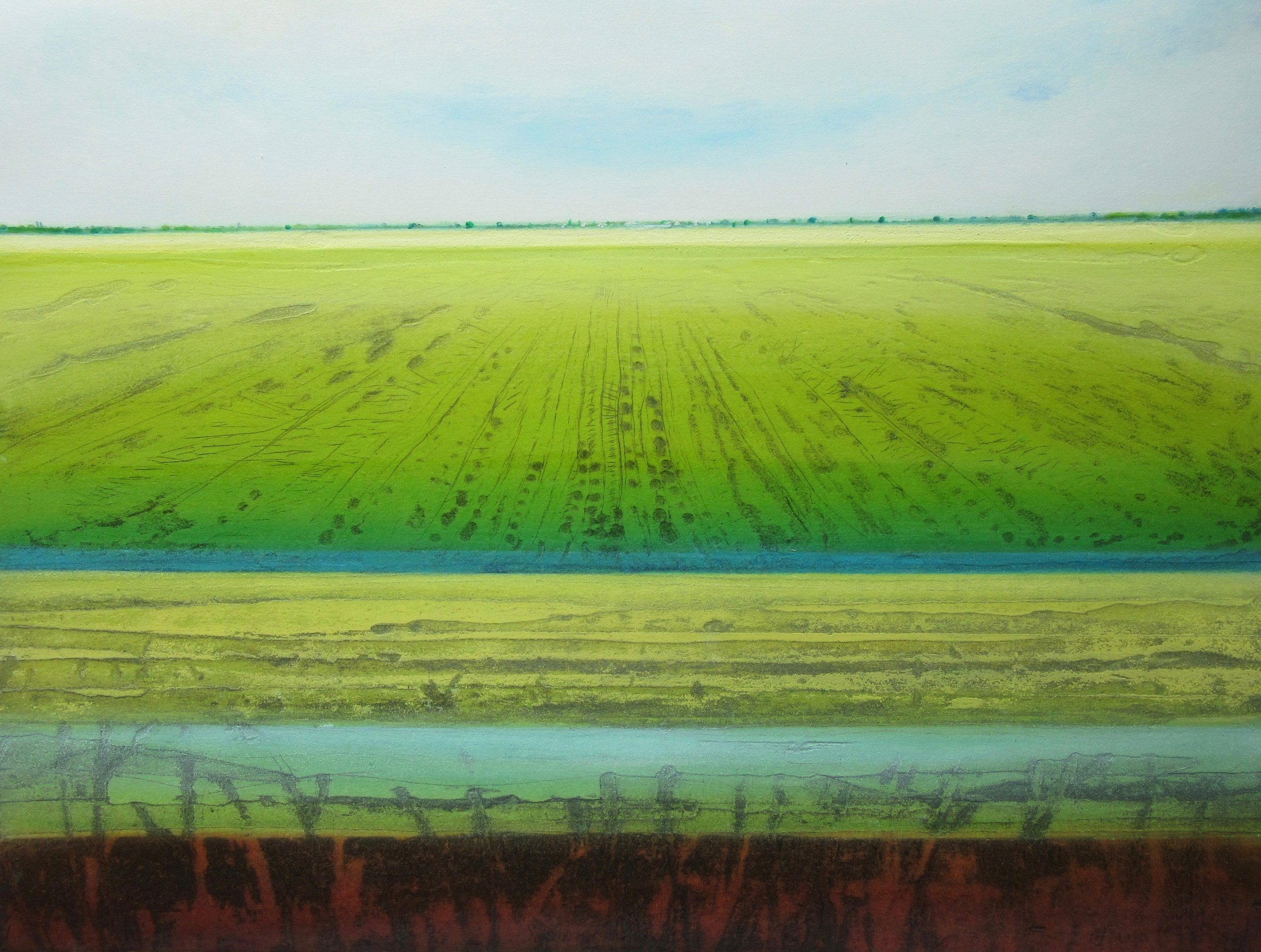 Summer Fen IX   drypoint ,  monoprint  and  carborundum   £350 framed  sold