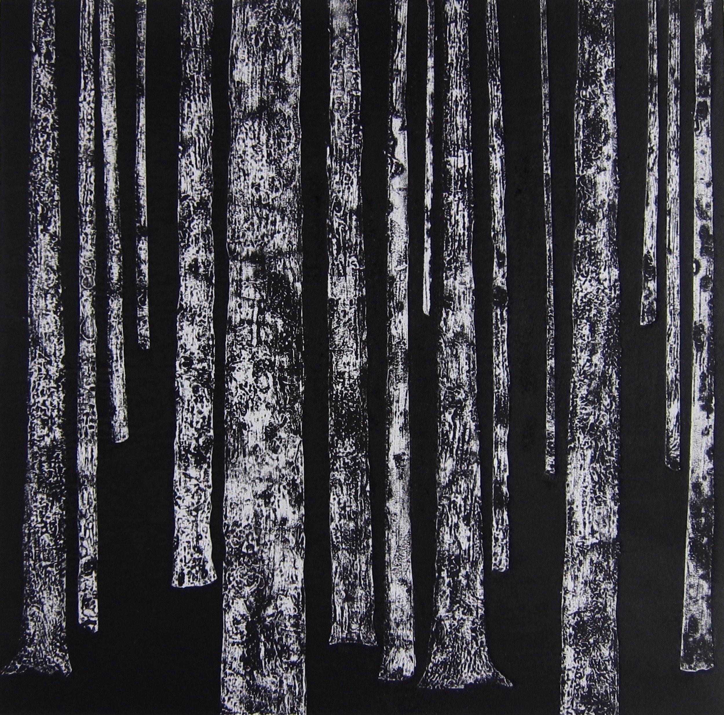 Dark Forrest  silk aquatint  48 x 48 cm  £260