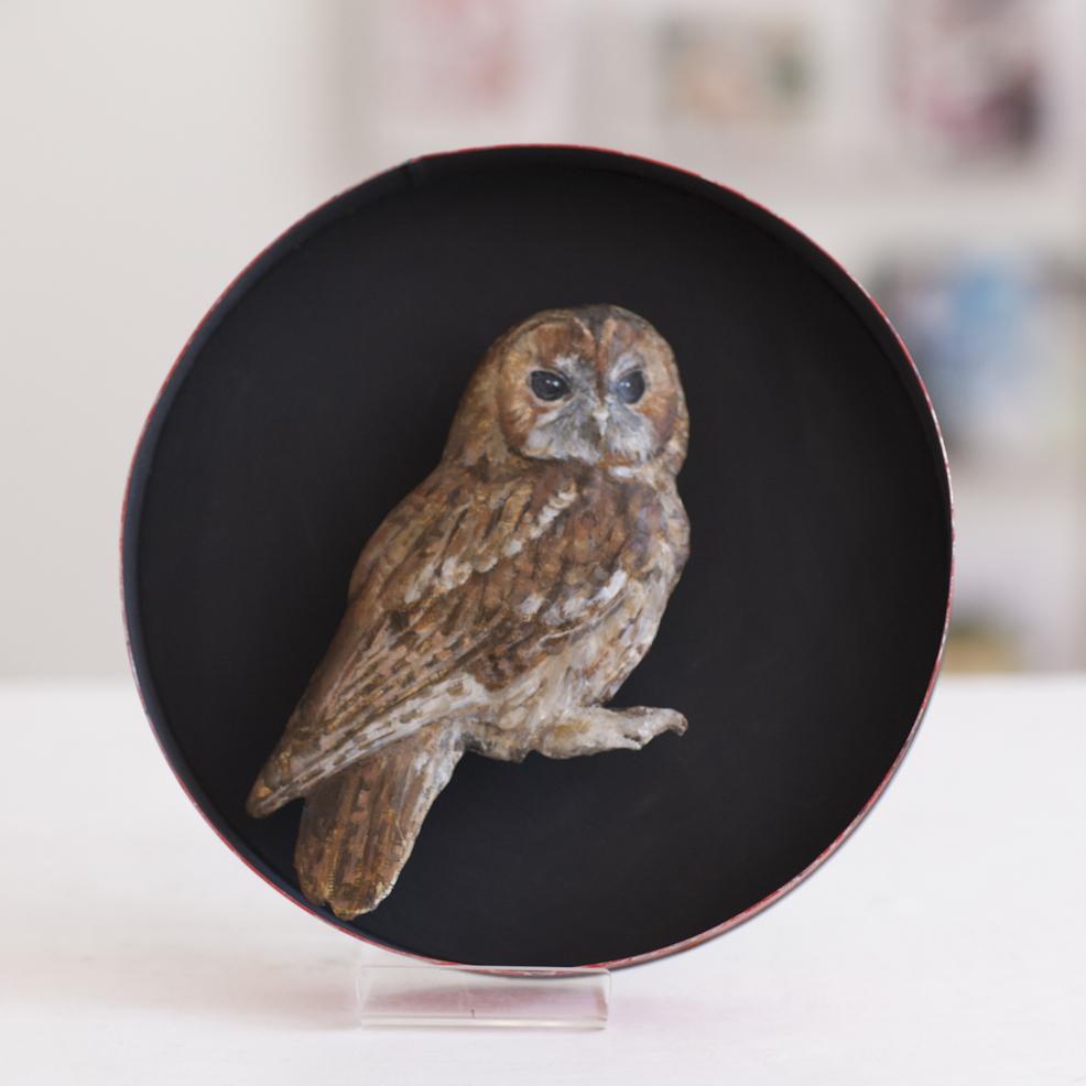 Tawny Owl  Mixed Media  20 cm diameter x 3cm  SOLD