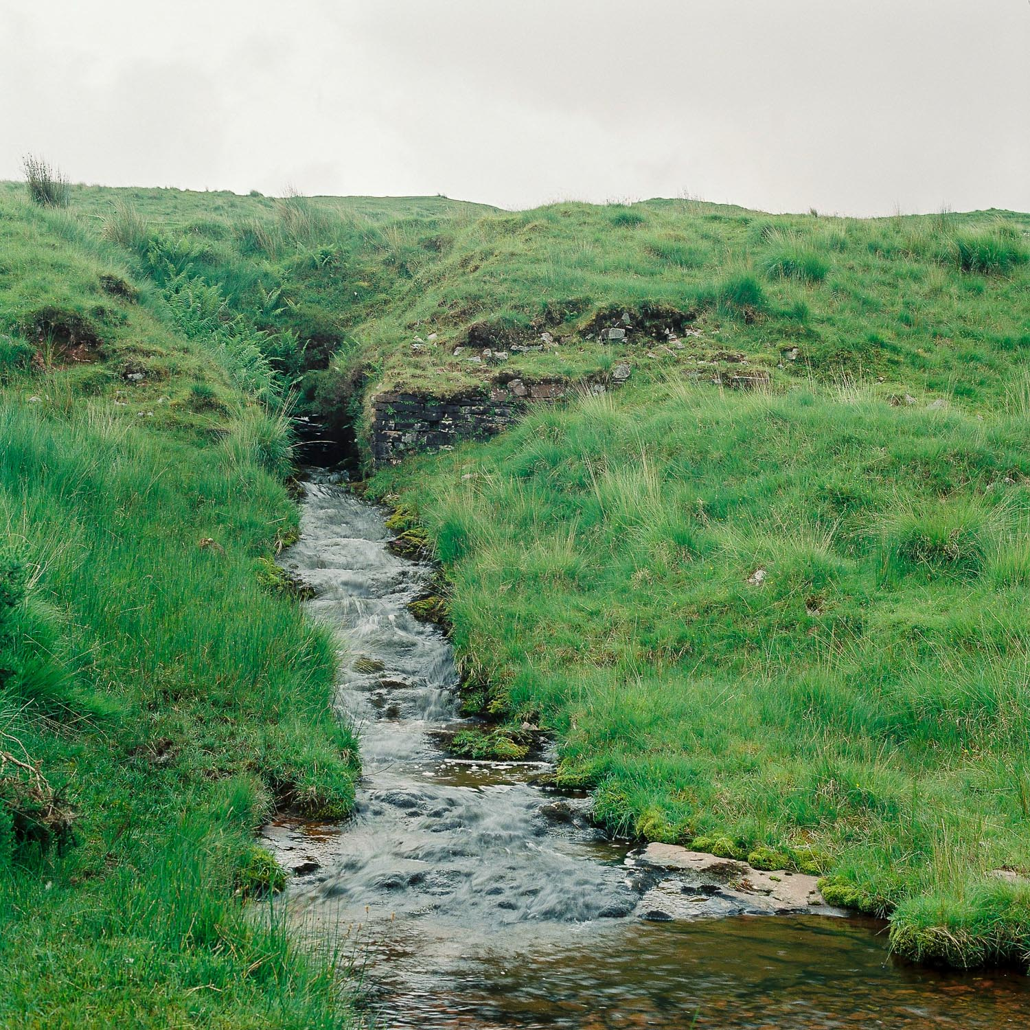 Small streams like this are found all over the Brecon Beacons, stopping at each one soon makes a quick drive much longer!