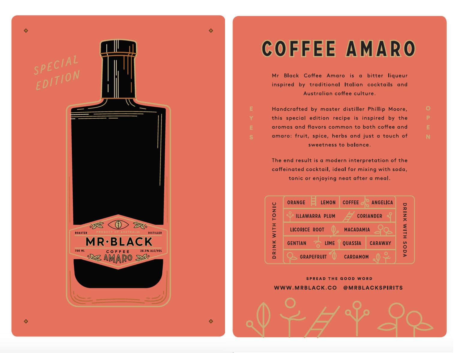 Mr+Black+Flyer.jpg