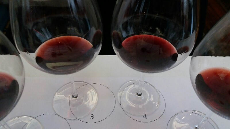 Moorooduc Estate offer three Pinot Noirs on a Plunge Wine Tour
