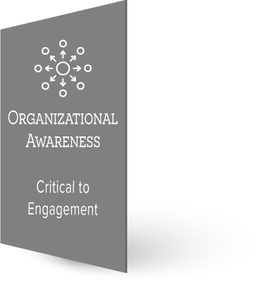 organizational.png