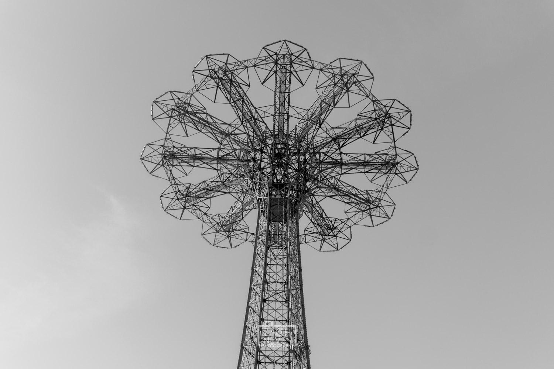 1-81.jpg