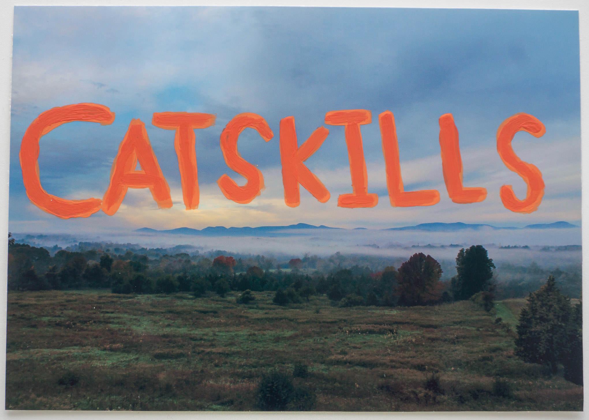 CATSKILLS   (9x6 - print - acrylic