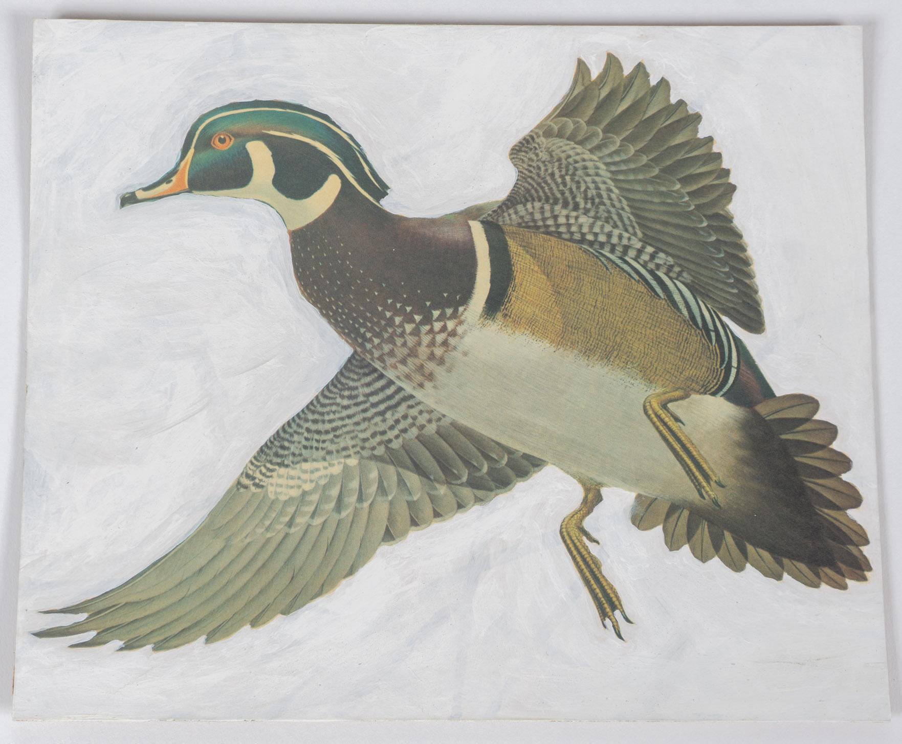 bird flying portrait   (9x11 - board - acrylic