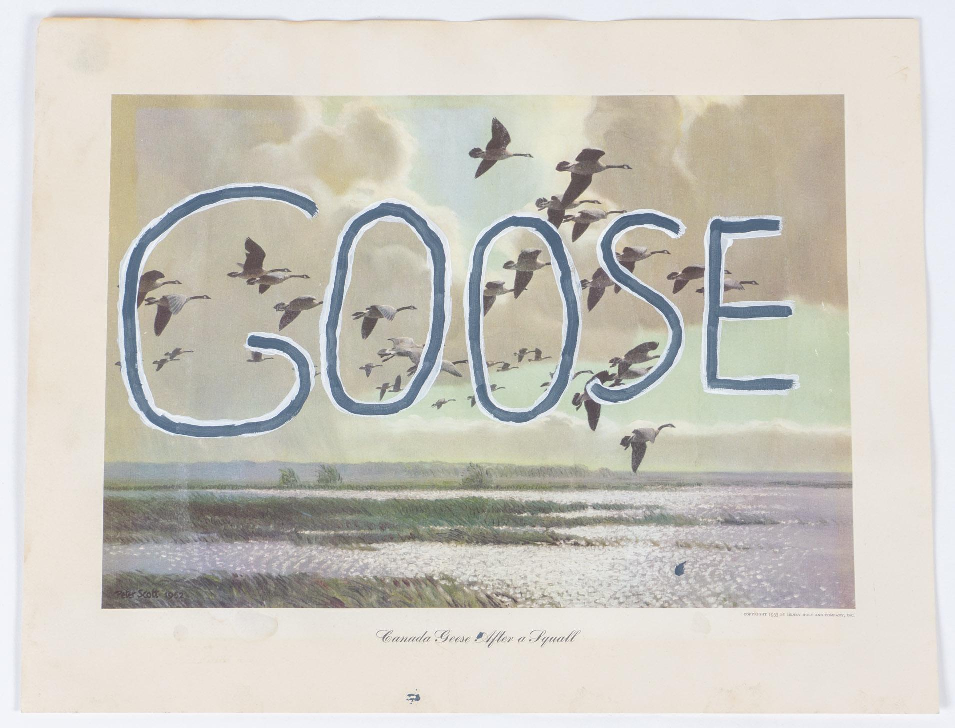 GOOSE   (13x17 - print - acrylic