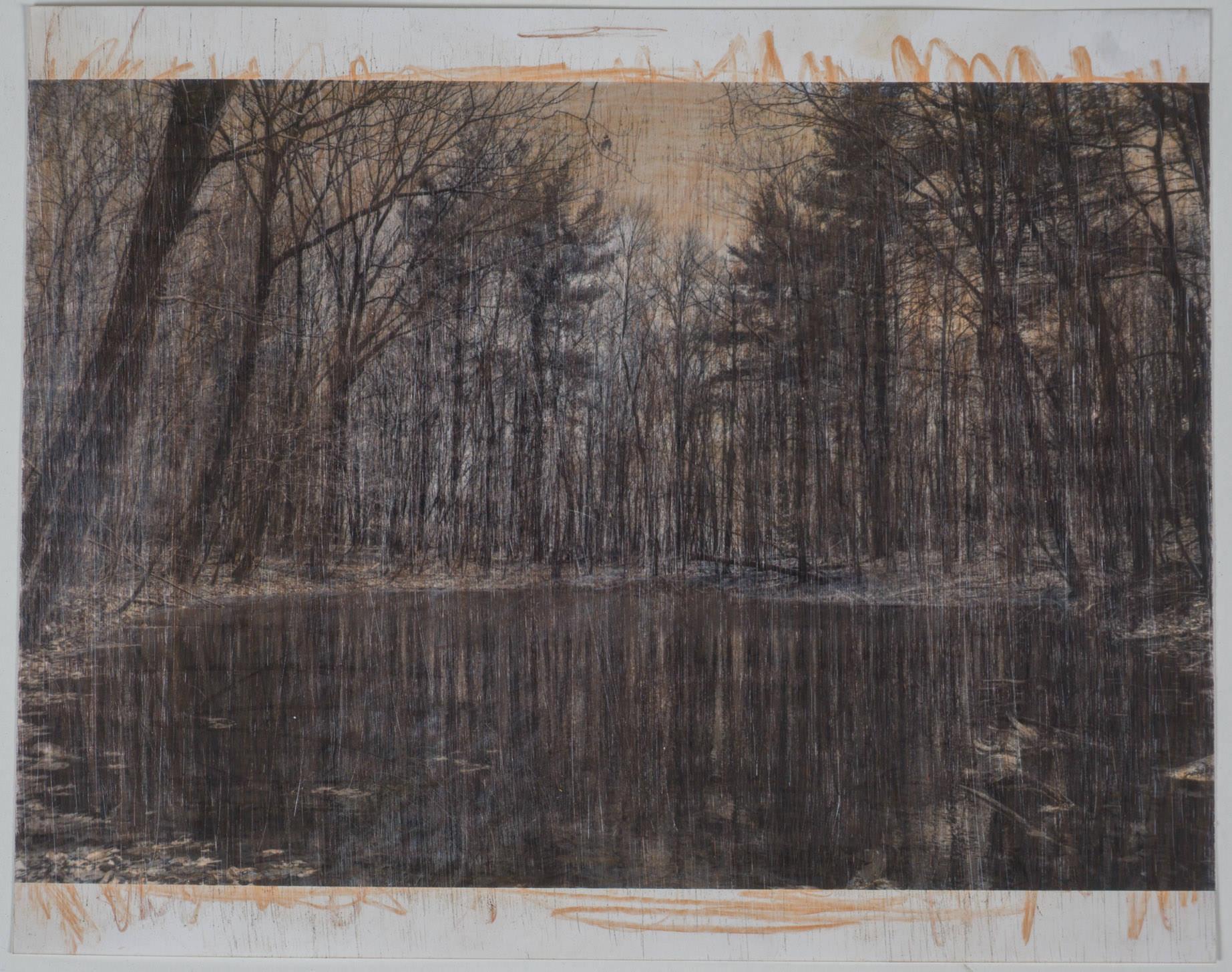 Woods pond  (8x10 - sanded print - pencil