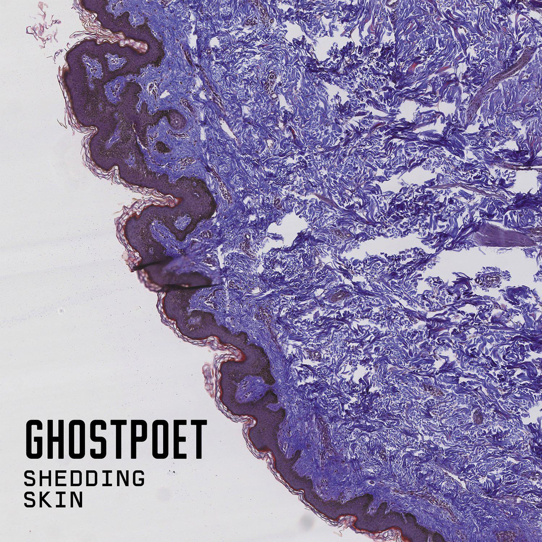shedding_skin.jpg