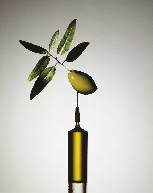 OLIVE OIL ADDICTION