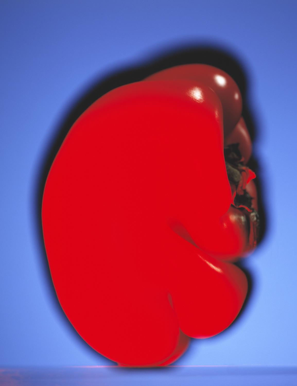 1_of_11_fat pepper.jpg