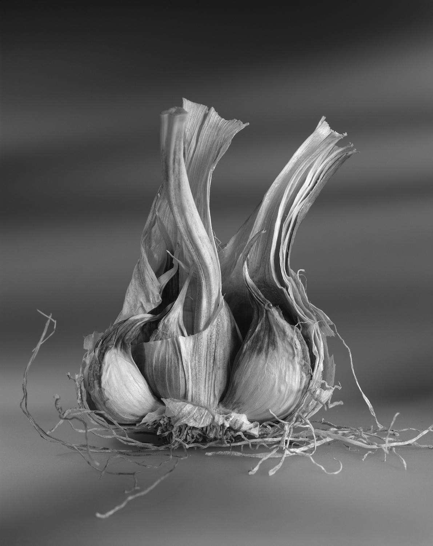 3_of_4_Garlic.jpg