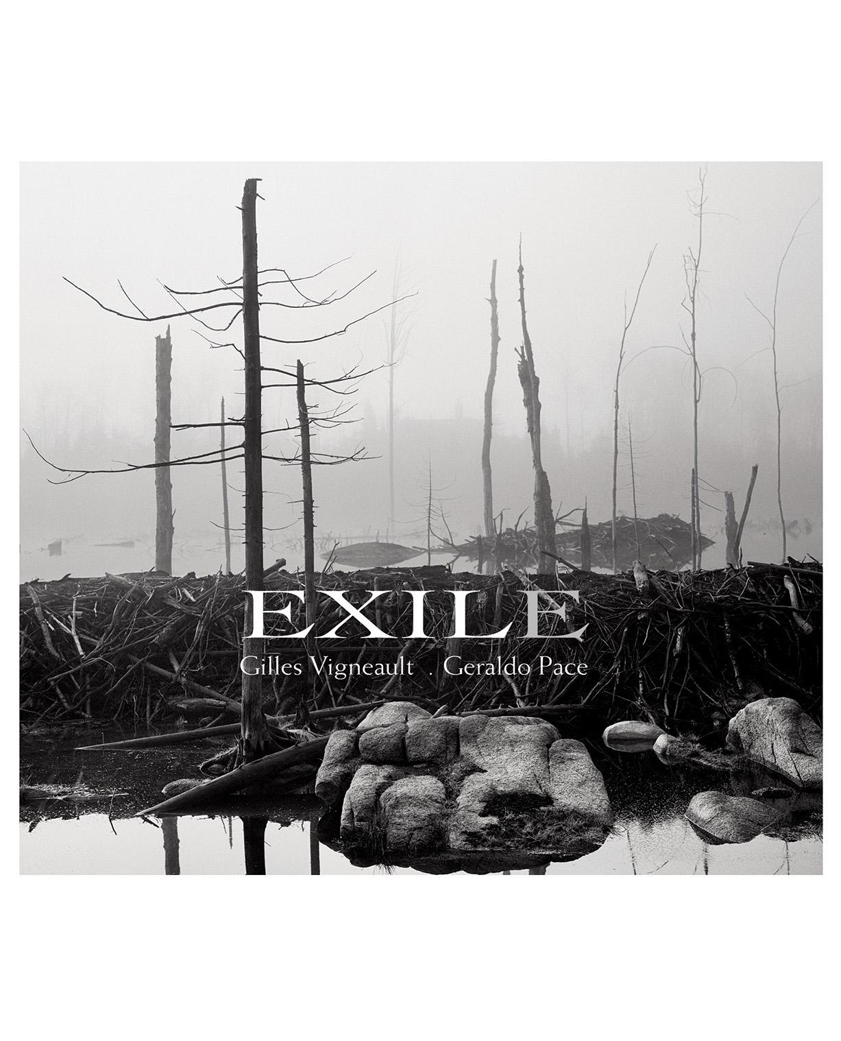 new exile.jpg