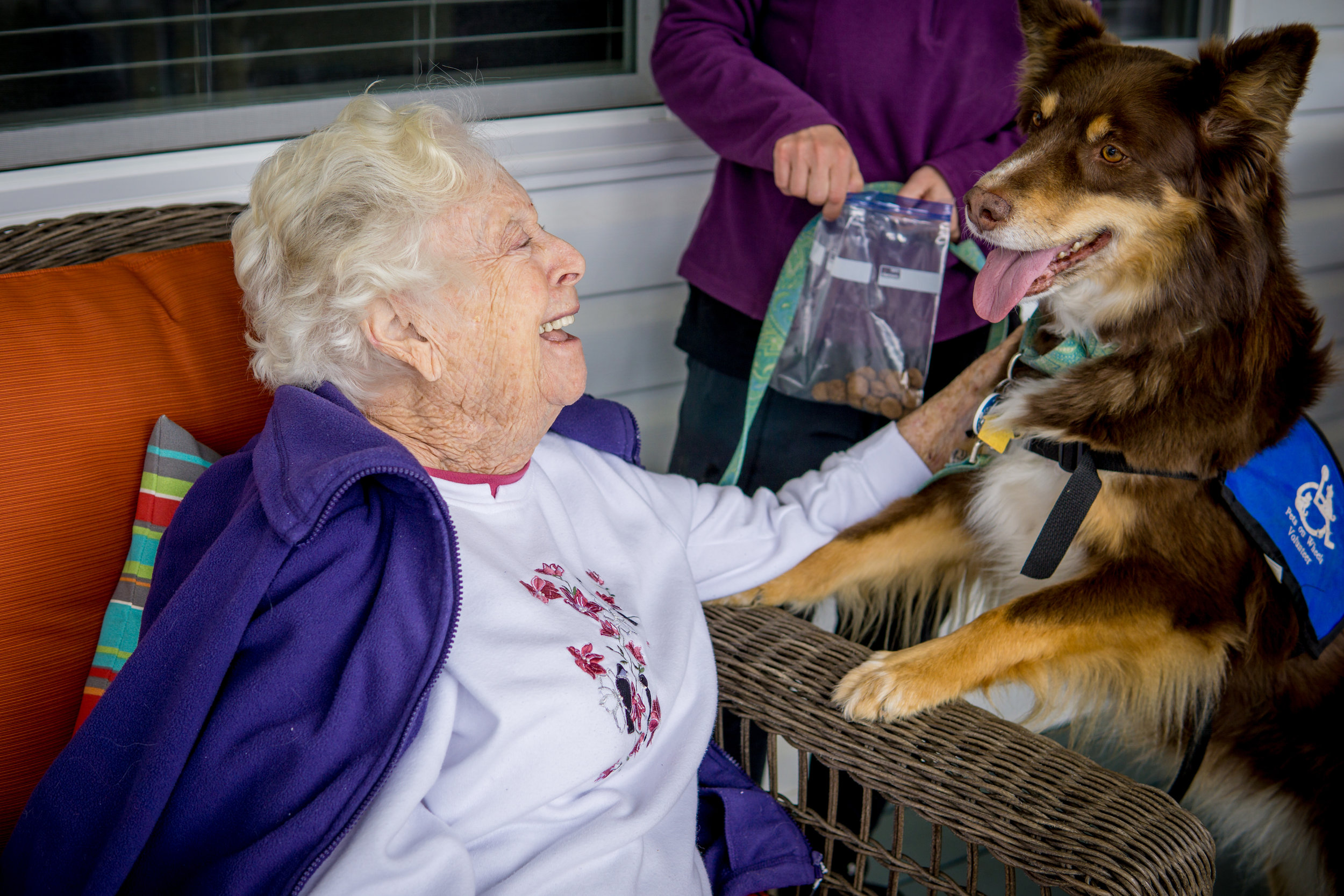 Pet and Music Therapy (3 of 9).jpg