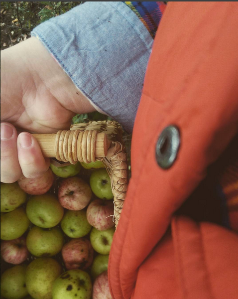 apple_picking.png