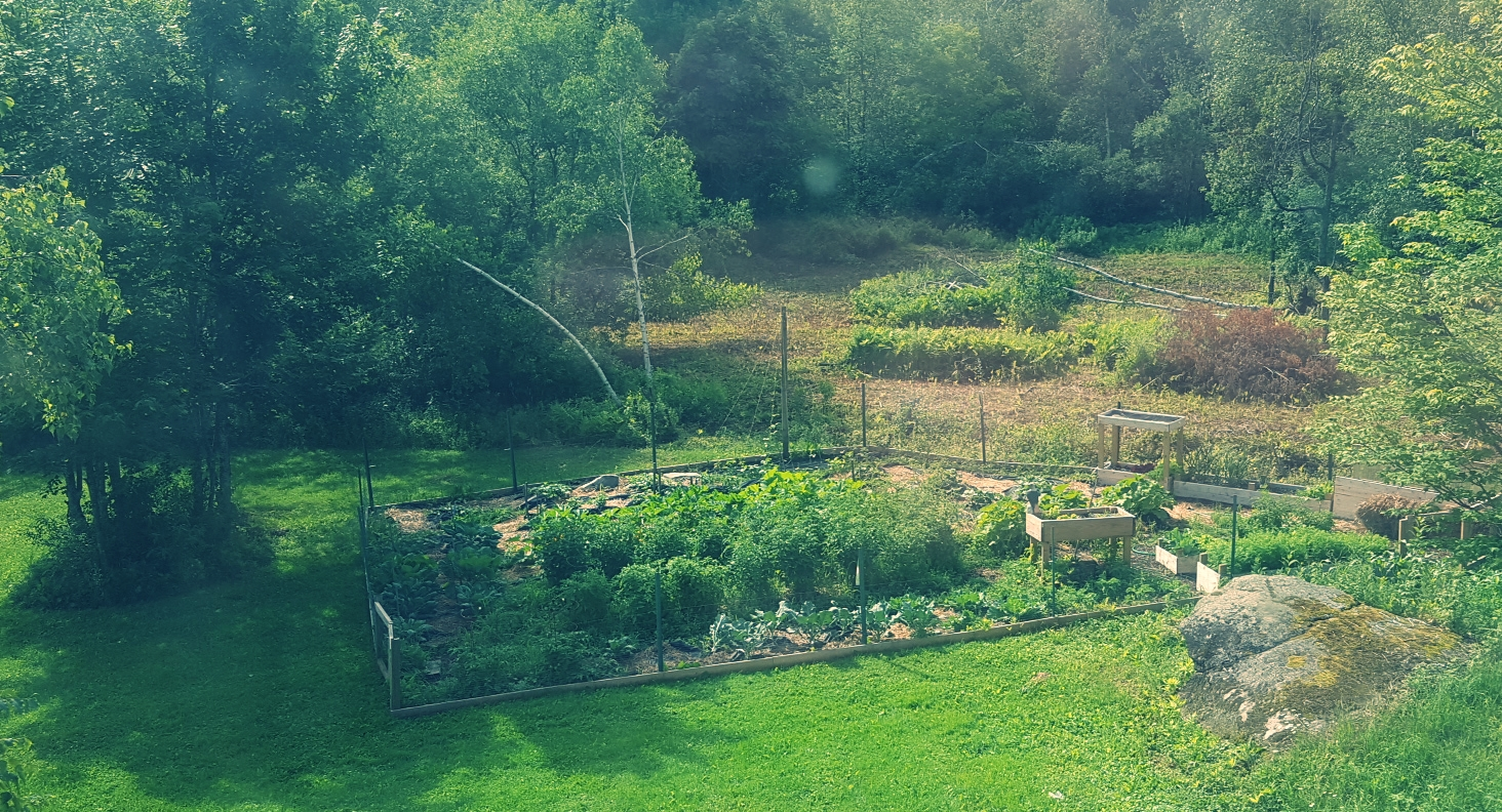 Making some progress, with long sunny days and occasional rainfall.