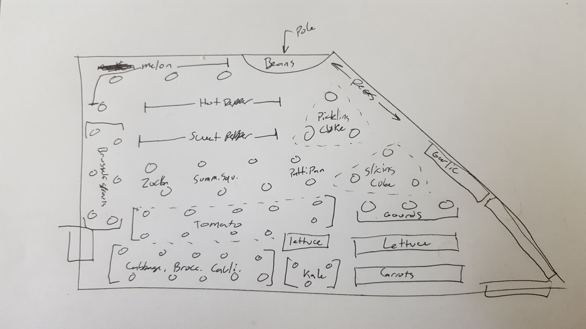 A little back-of-the-envelope planning for the garden plot.