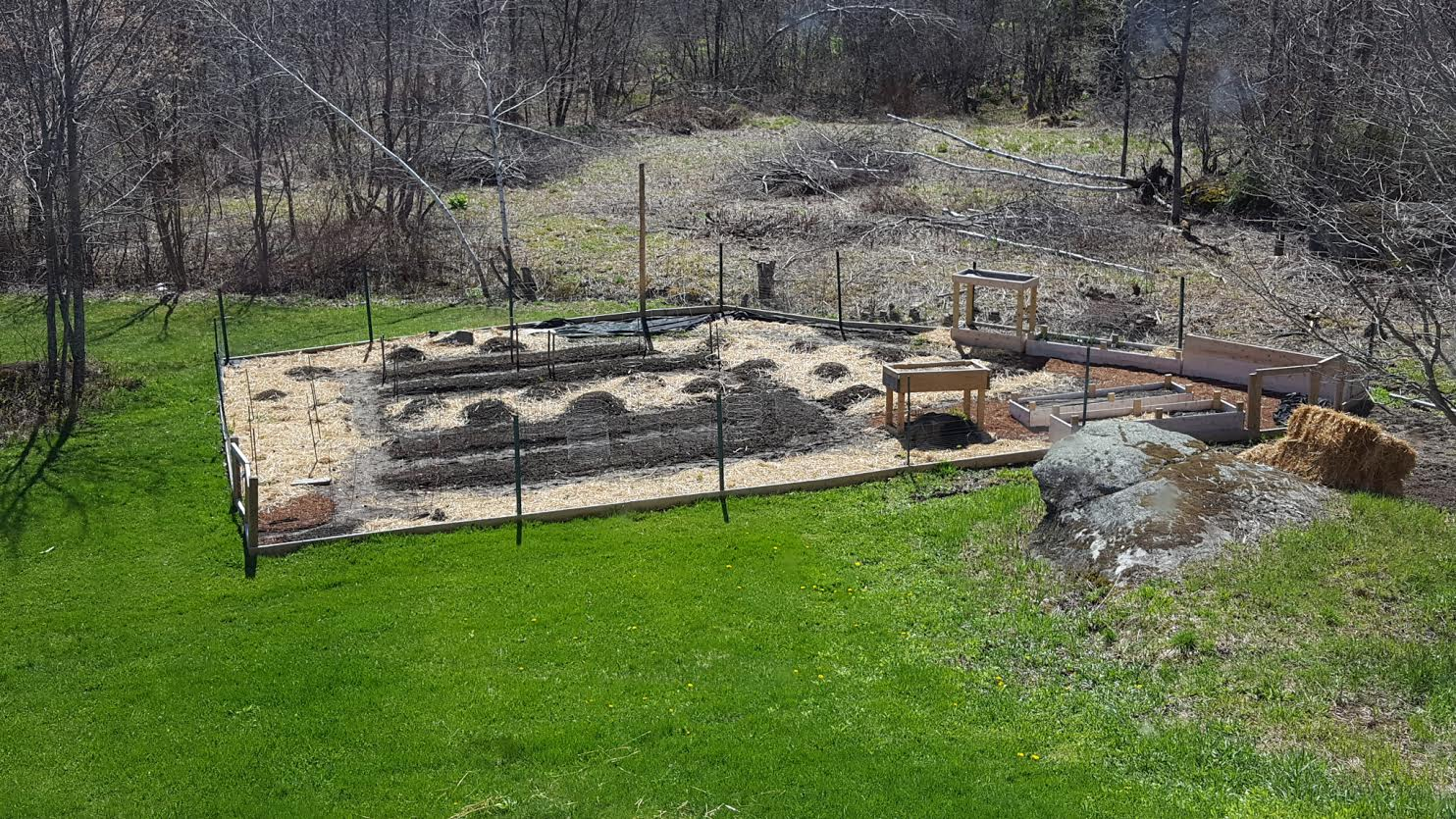 Example of early preparation of the garden, at the start of the growing season 2016