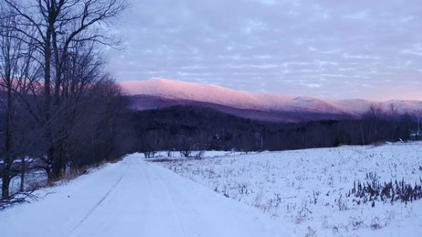 Enjoying an evening walk at Vermont Bed and Breakfast at Russell Young Farm