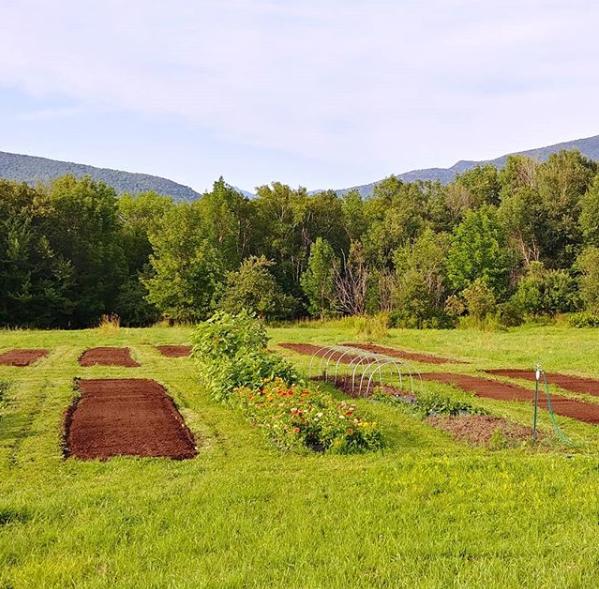Luke has added new flower beds in the lower field, where every season we enjoy new blooms!