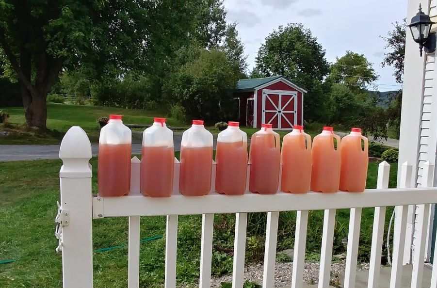 Fresh cider from the apple trees at our Vermont Bed and Breakfast!