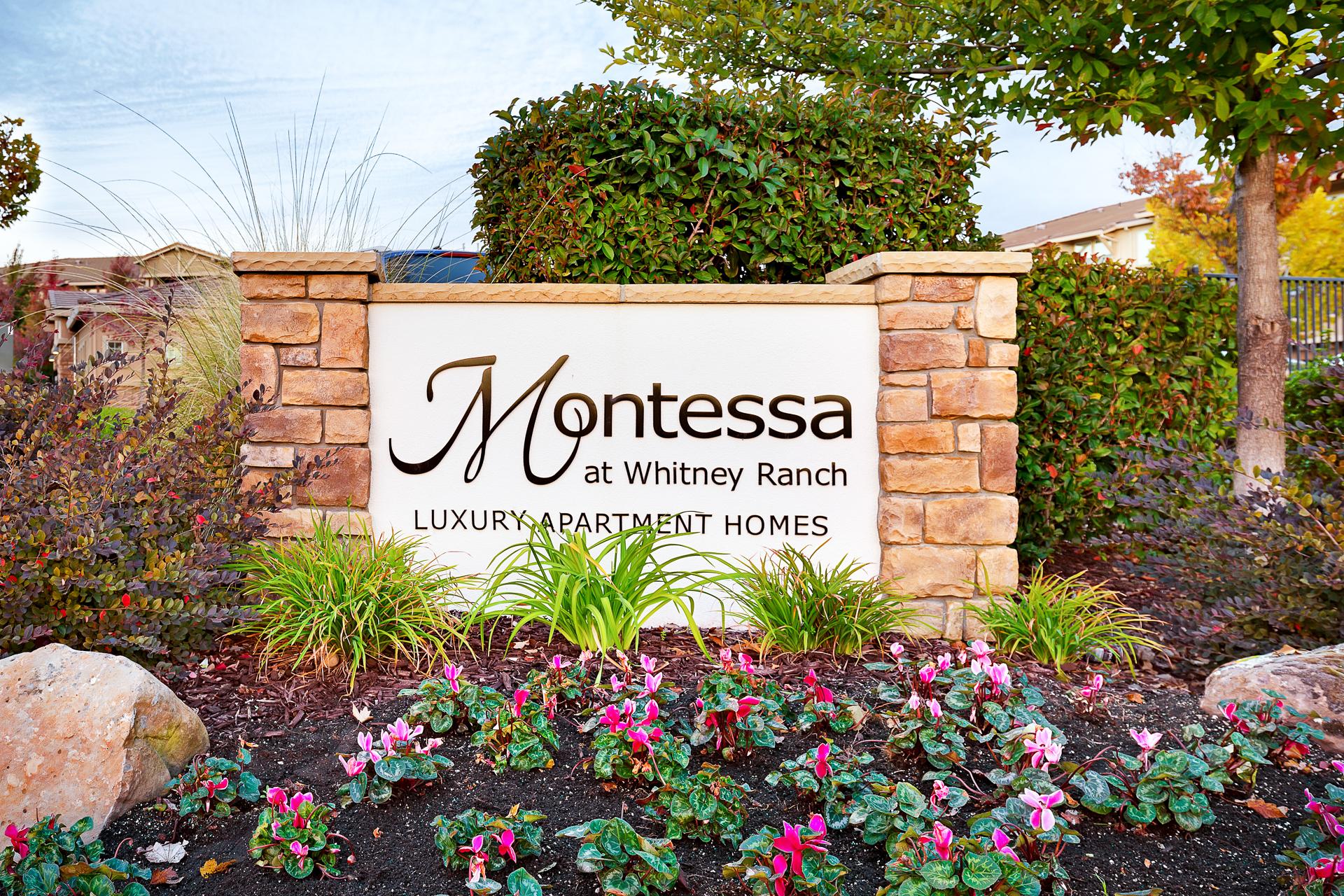 Montessa2-02.jpg
