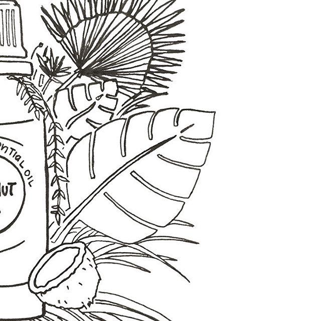 Good ol' ink on paper 🌿 illustration process for a social media piece