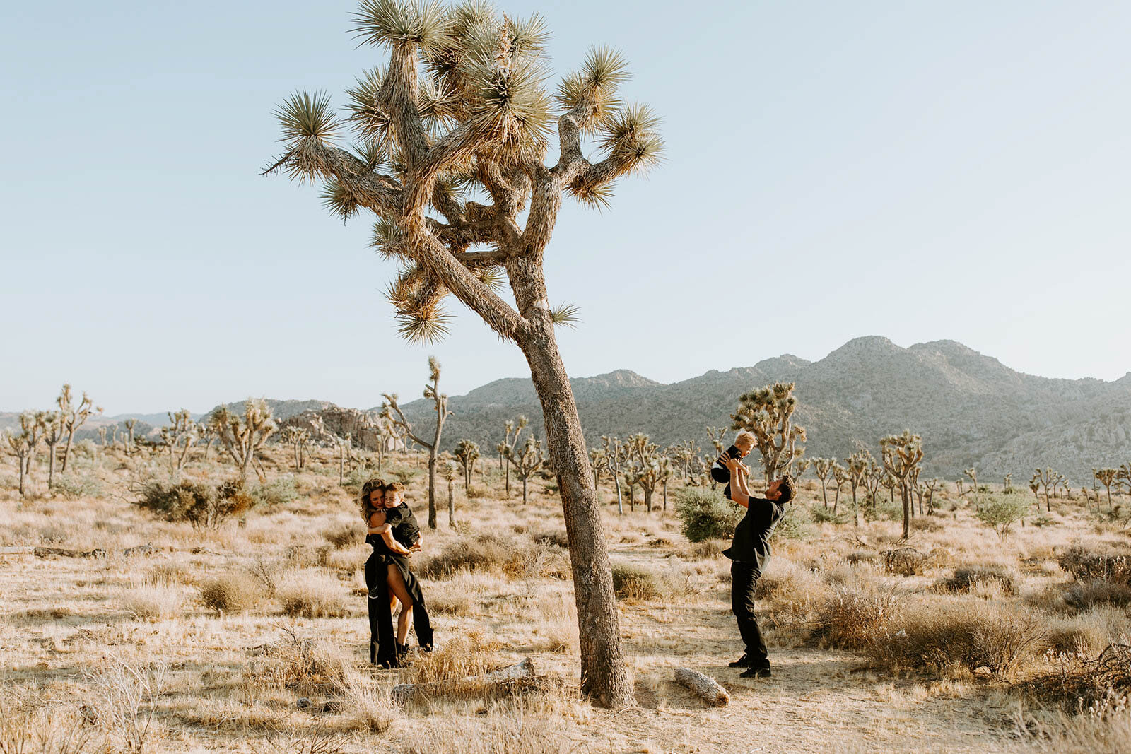 joshua-tree-family-photos-2019-3329.jpg