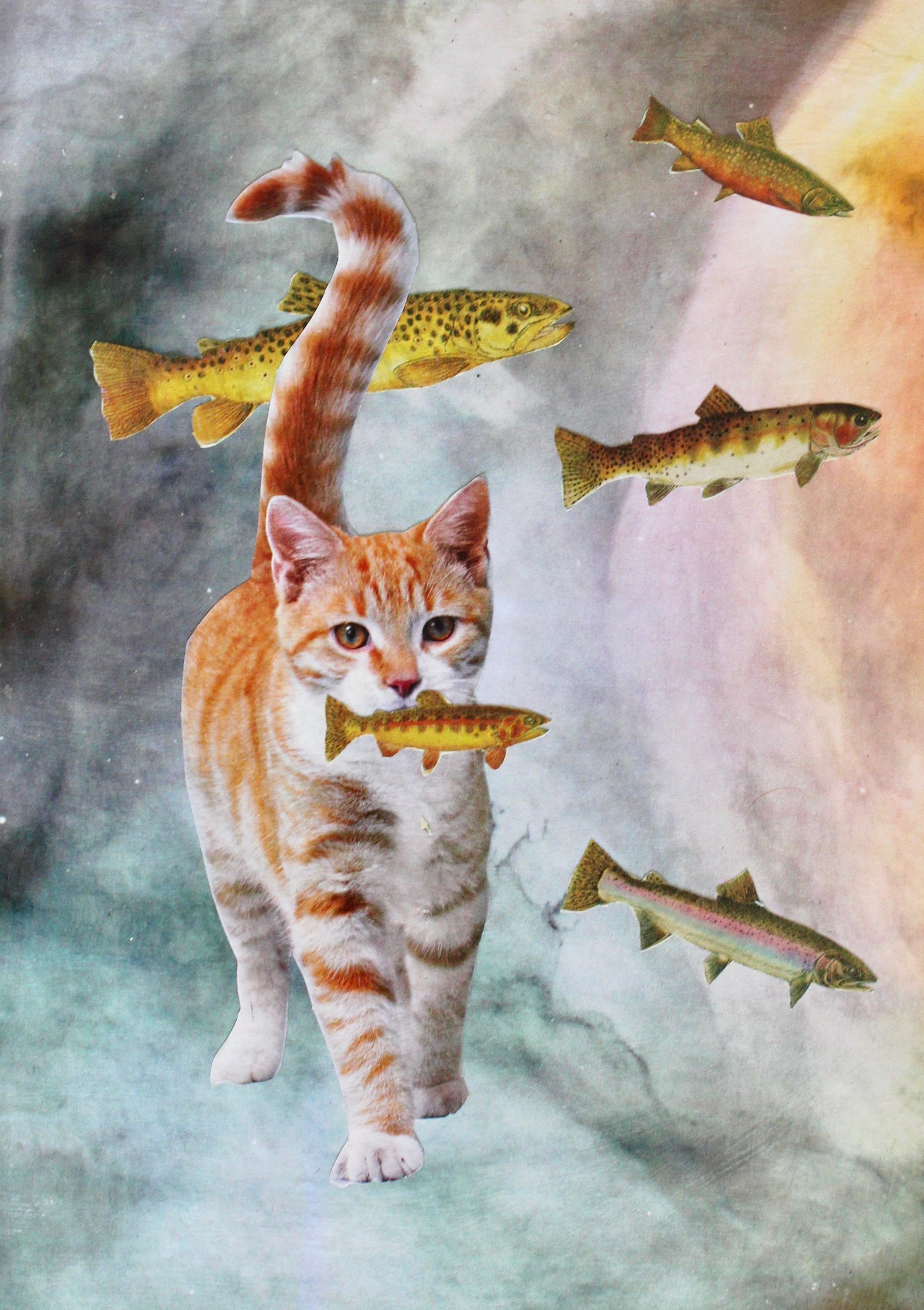 """""""Fish Tales"""""""