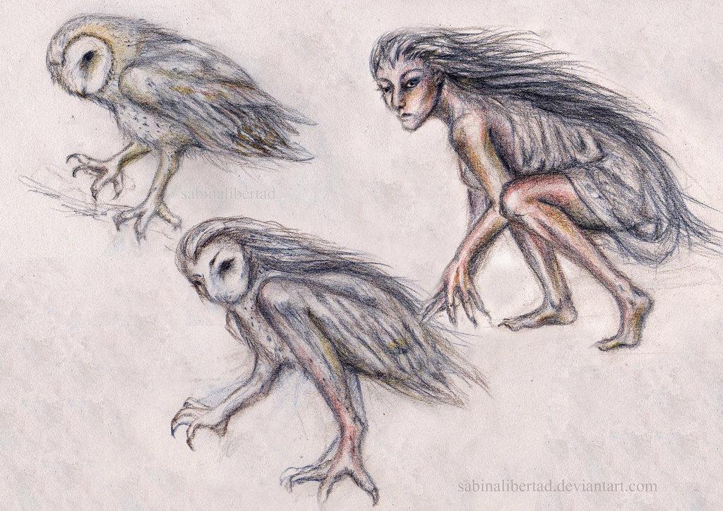 Owl - witch transformation. Photo credit:sabinalibertad.deviantart.com