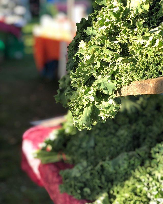 Hello beautiful! 🥬 Come get your fresh veggies, crafts, coffee, wine and more at the Ludlow Farmers Market tonight! #FarmersMarket #ShopLocal . . . #okemo #ludlow #ludlowvt #vermont #vt #lettuce #veggies #ilovermont #itsokemotime #organic #supportfarmers #local #eatlocal
