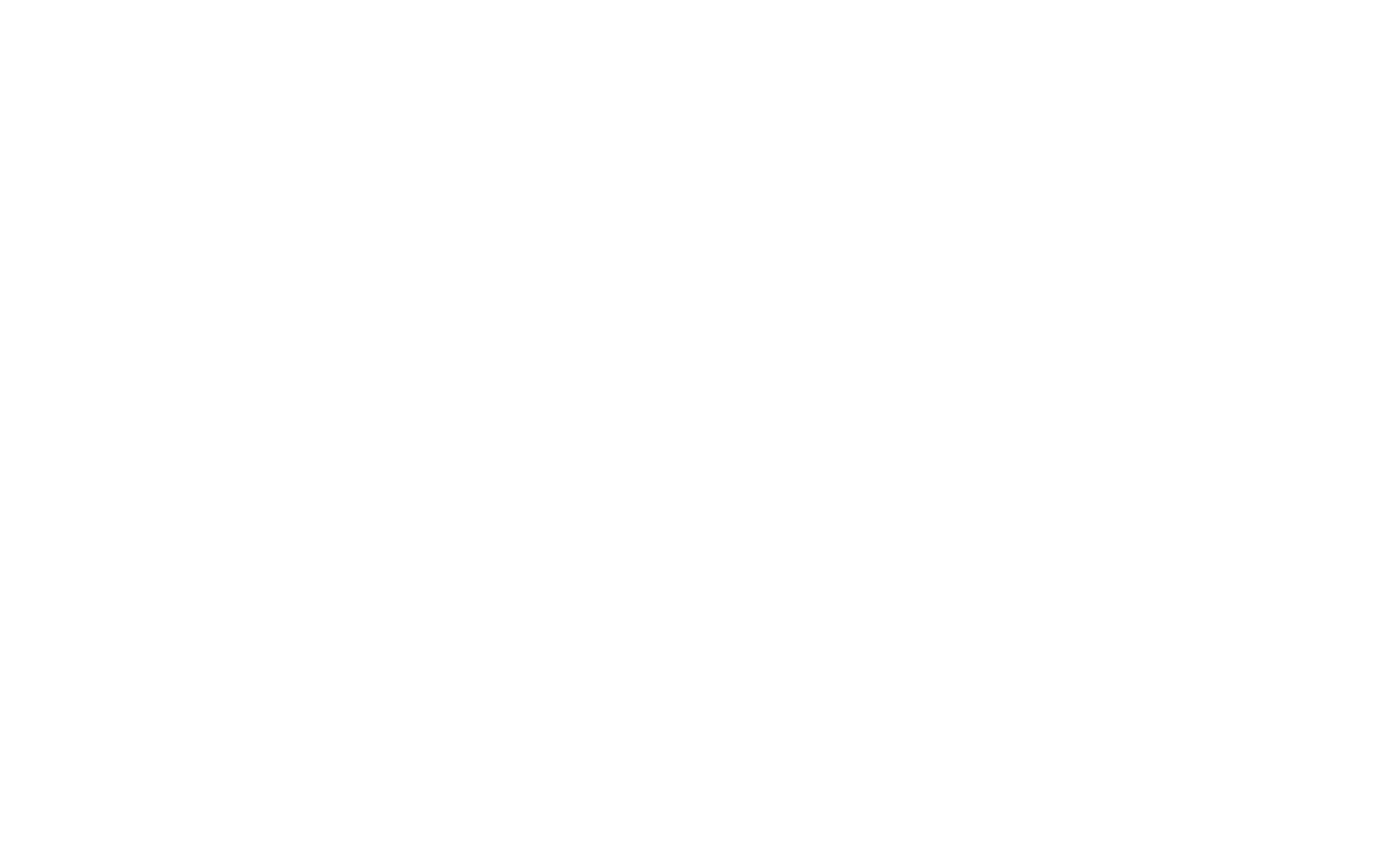 Salt-Network-Logo-Transparent-White.png