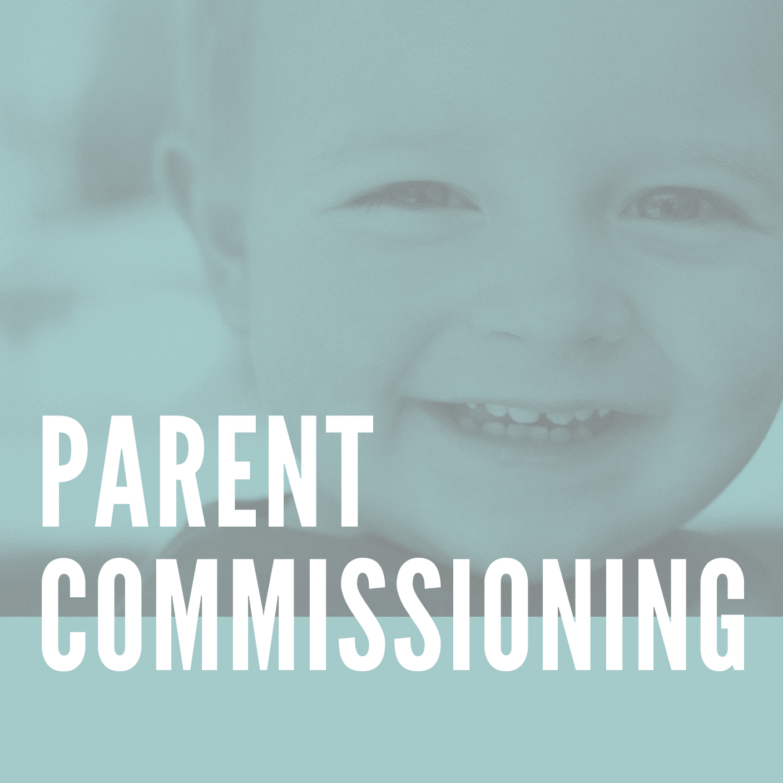 Parent Commissioning.jpg