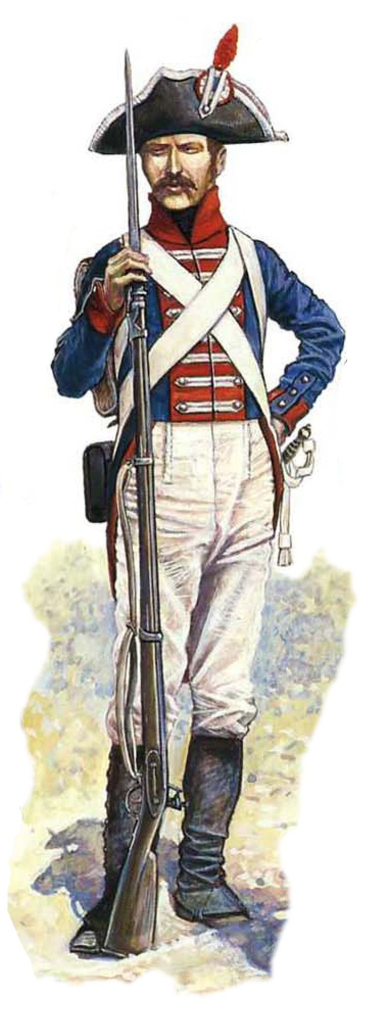 A Westphalian private in Napoleon's service