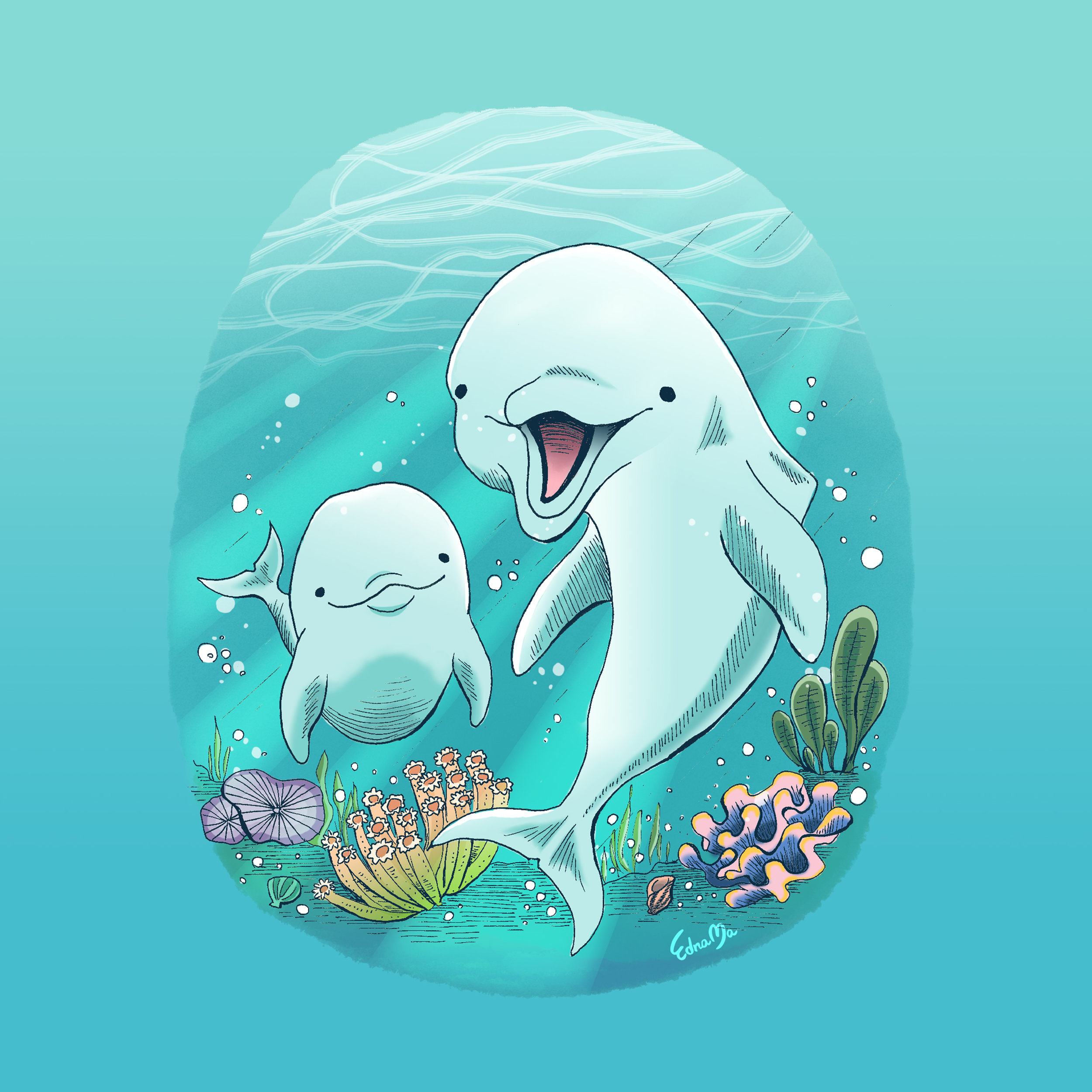signed-Happy Dolphins2.jpg