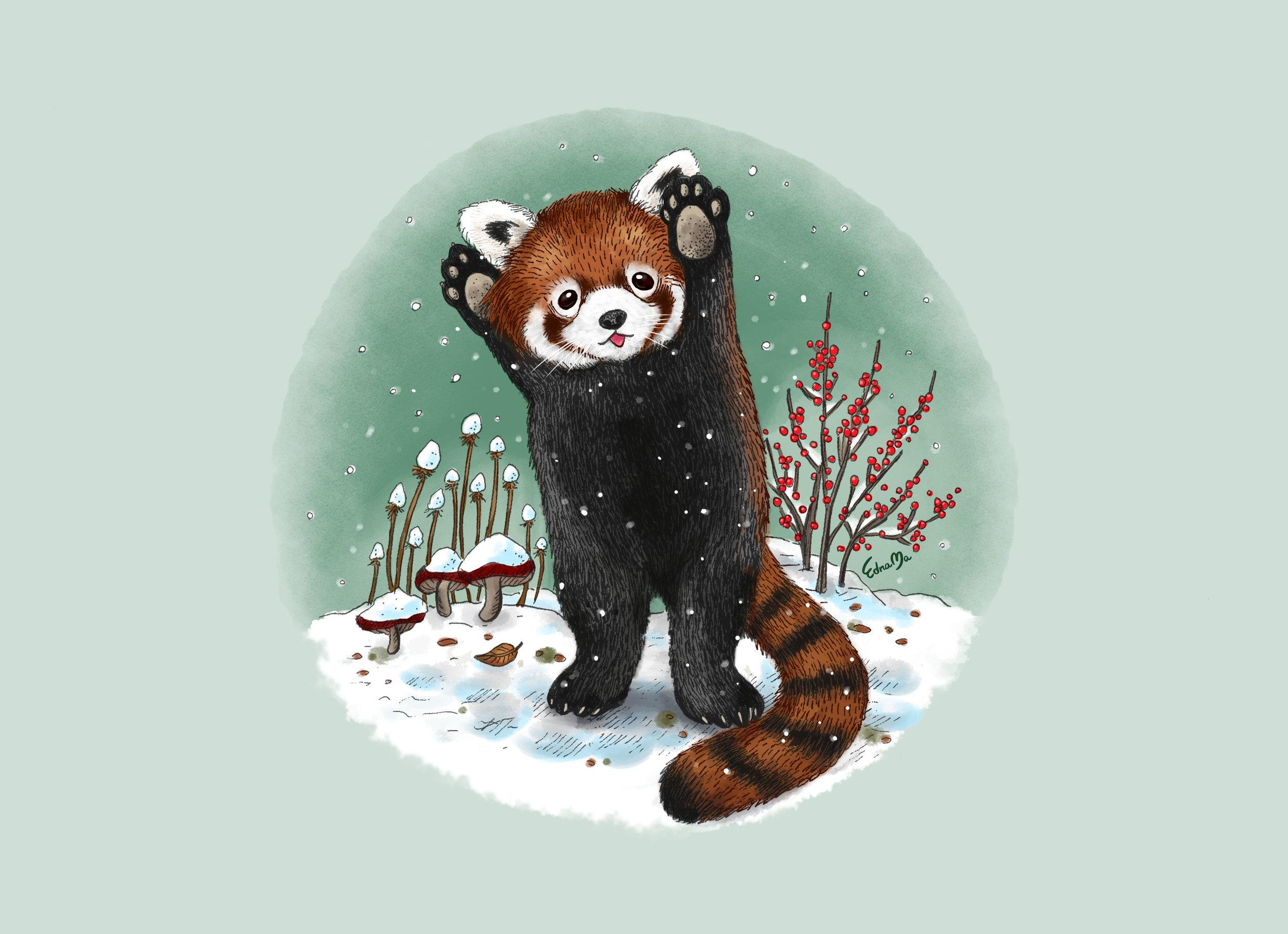 Red Panda-6.jpg