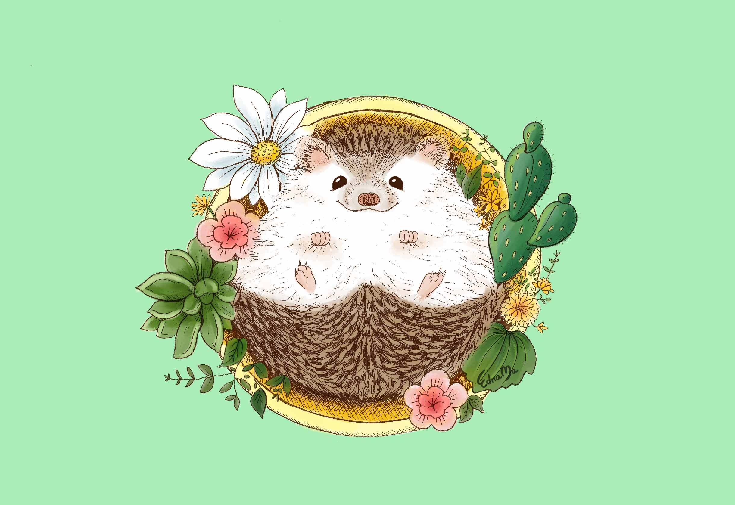 hedgehog with cactus8.jpg