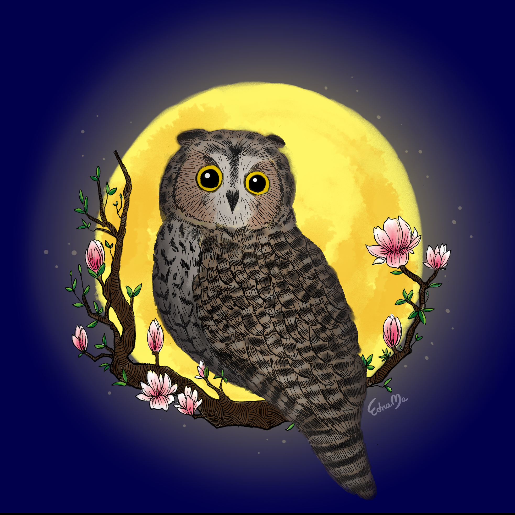 01Owl with Moon.jpg