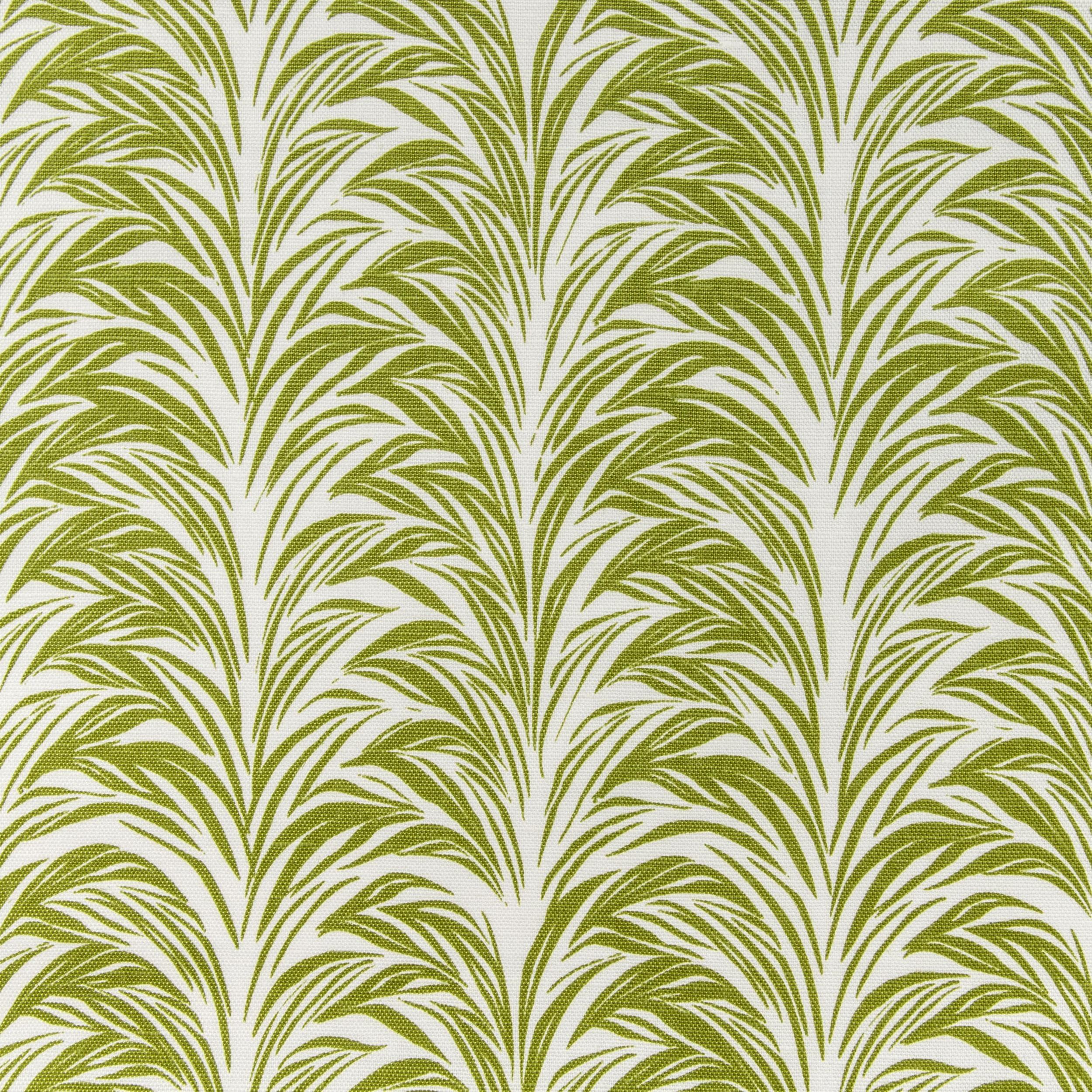 Zebra Fern/ bottle green