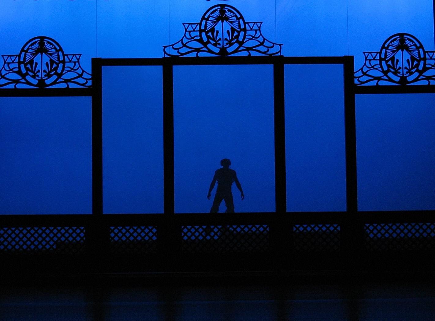 Puck silhouette.JPG