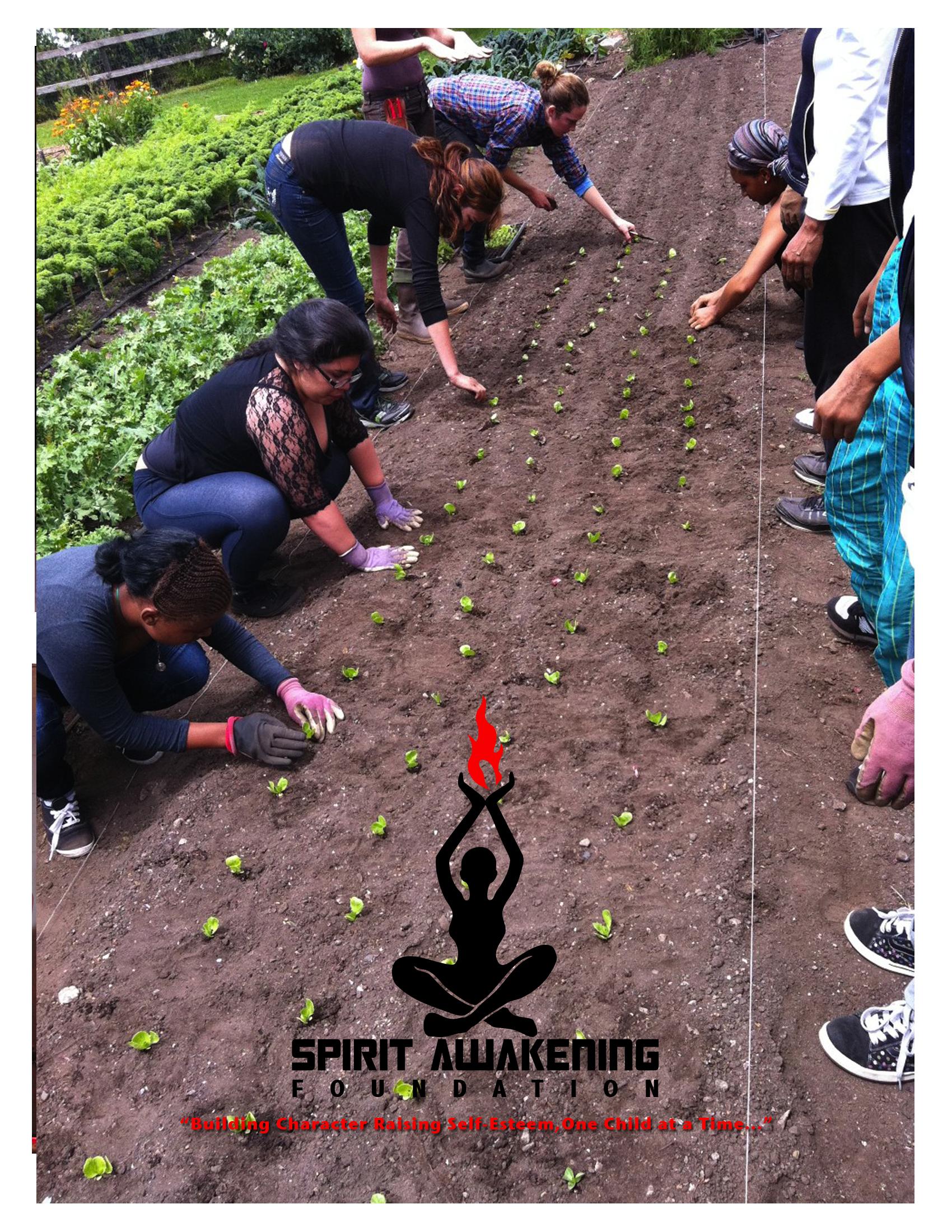 planting.jpg
