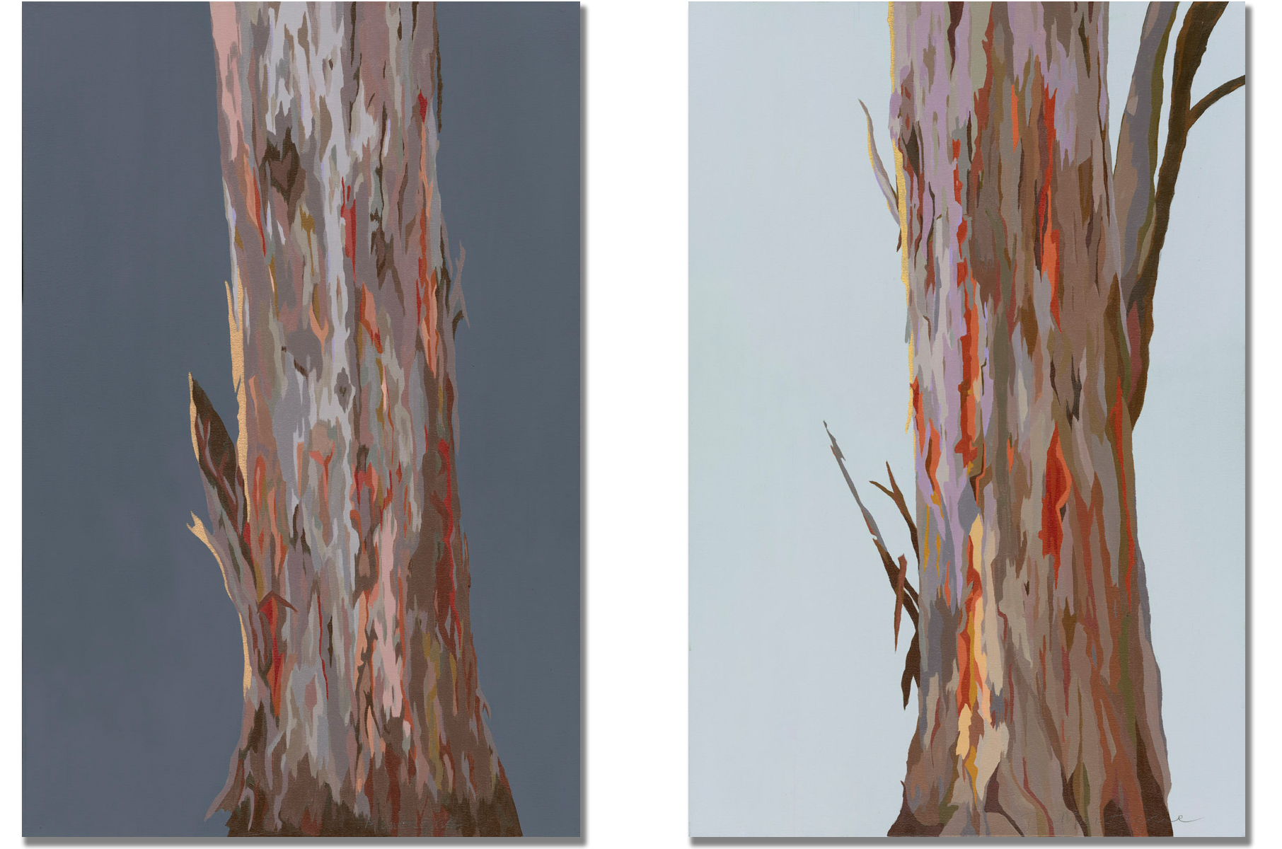 Natives by Dawn I and II ,  Limited Edition of 10 signed canvas Prints,  © Ida Montague 90 x 60cm. ENQUIRE   Montague's second native tree study looks at the subject in first light;where bark has shed from the majestic Eucalyptus and nature's colours reflect that cooler, calmer moment before the Australian landscape awakens. Capturing the almost iridescent textures at this fleeting instant canvas prints are now available.
