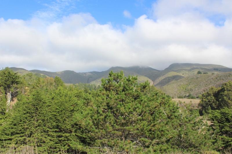 Gennifer Rose - Montara Mountain