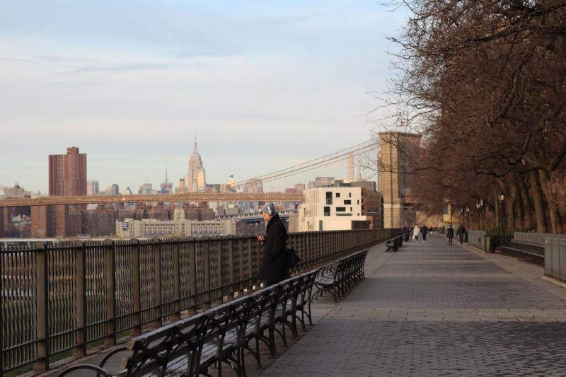 Gennifer Rose_Brooklyn Heights Promenade